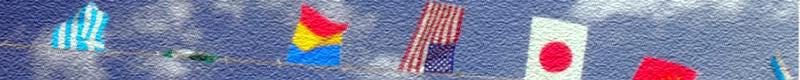 r12_flag_greencard